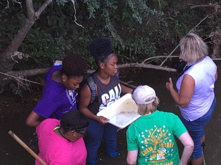 Hydrology, Stream Ecology and Water Quality
